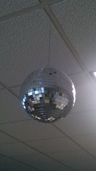 The Drunken Panda Disco Ball