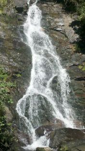 Beautiful Amicalola Falls