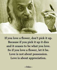 Love a flower